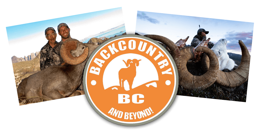 Post Hunt Backcountry Bc And Beyond Best Canadian Moose And Combo Hunts