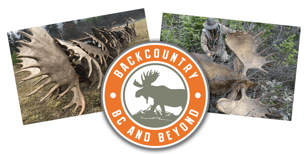 Pricing Backcountry Bc And Beyond Sheep Hunting Outfitter